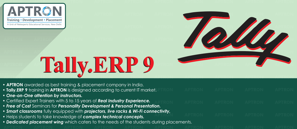 Best Tally ERP 9 training institute in Delhi