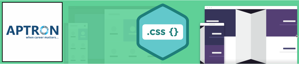 Best css training institute in delhi