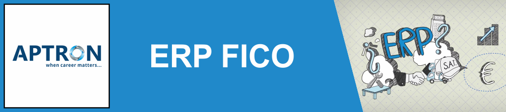 Best erp-sap-fico training institute in delhi
