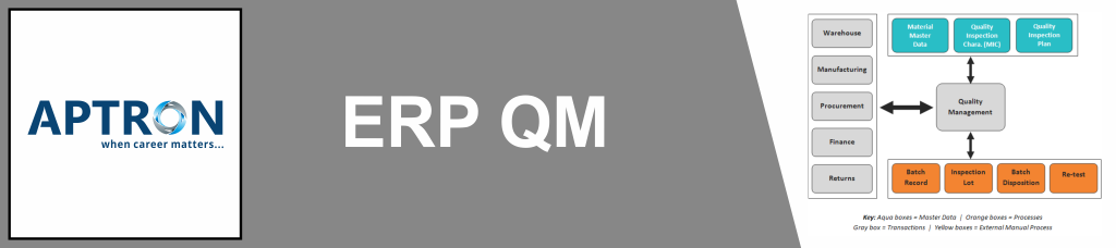 Best erp-sap-qm training institute in delhi