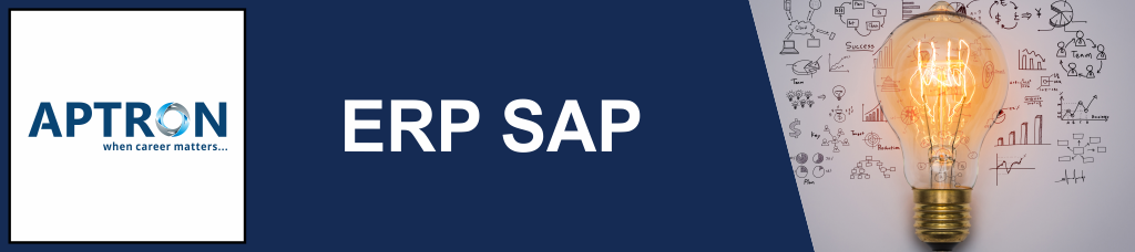 Best 6 Months Industrial Training in erp-sap