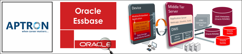 Best oracle-essbase training institute in delhi