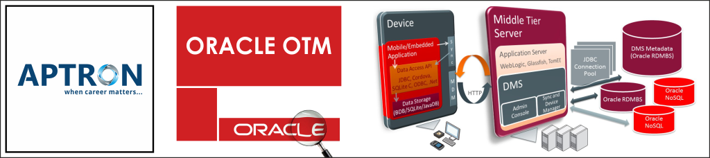 Best oracle-otm training institute in delhi