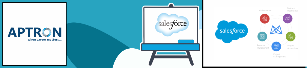 Best salesforce training institute in delhi